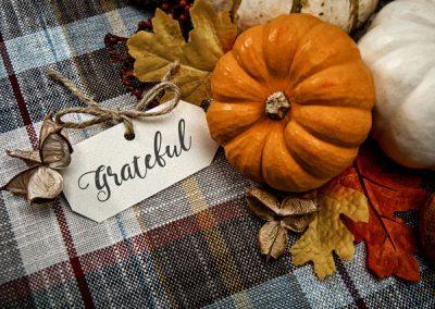 Attitude of Gratitude: What Makes The Estates Residents Thankful?